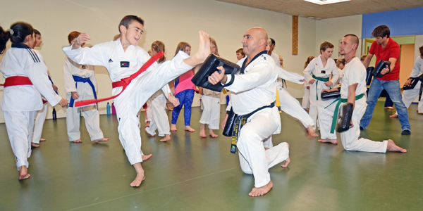 Reza Införde Taekwondo I Borlänge