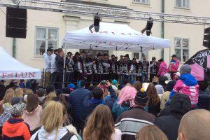 IBF Falun herrar vann SM igen