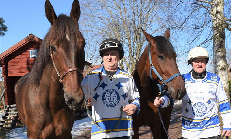 Hockey Och Hästar Som Förenar